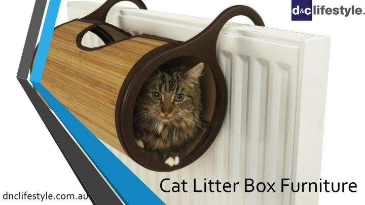 cat litter box furniture n.