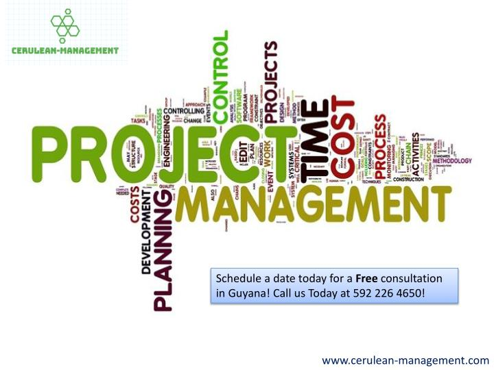 PPT - Project & Business Management Consultant | Guyana PowerPoint