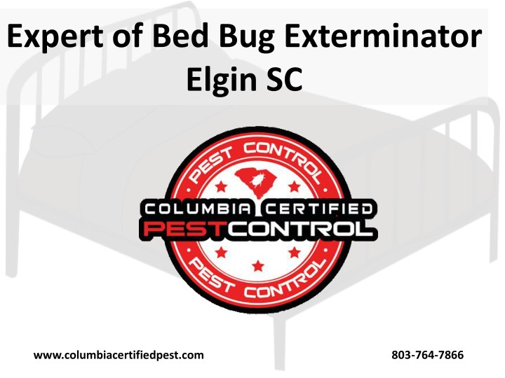 expert of bed bug exterminator elgin sc n.