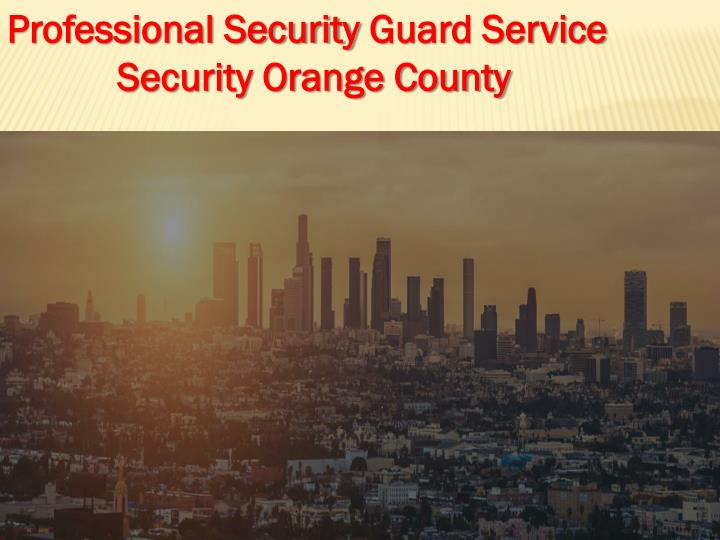 professional security guard service security n.