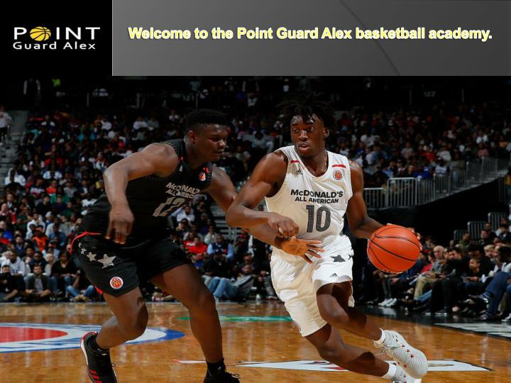 welcome to the point guard alex basketball academy n.