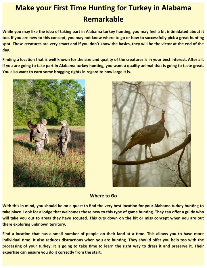 make your first time hunting for turkey n.
