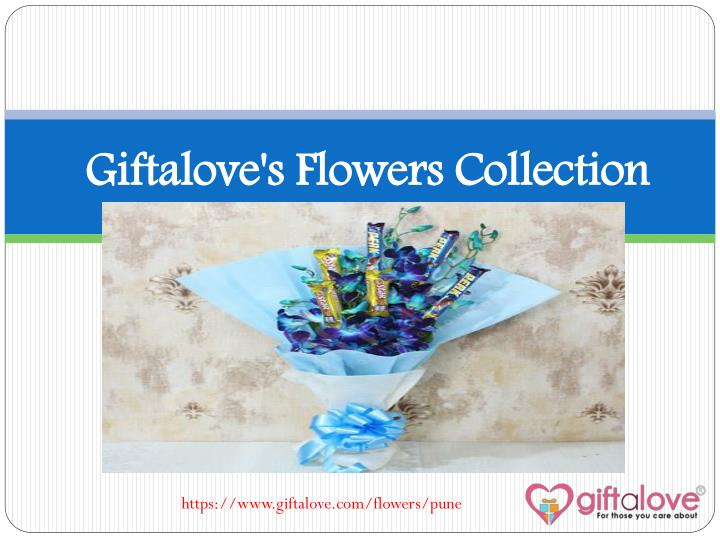 giftalove s flowers collection n.