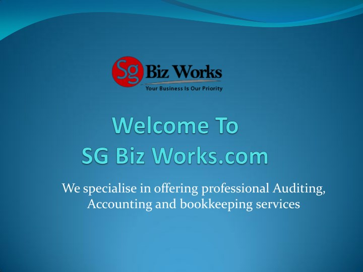 we specialise in offering professional auditing n.