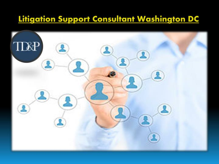 litigation support consultant washington dc n.