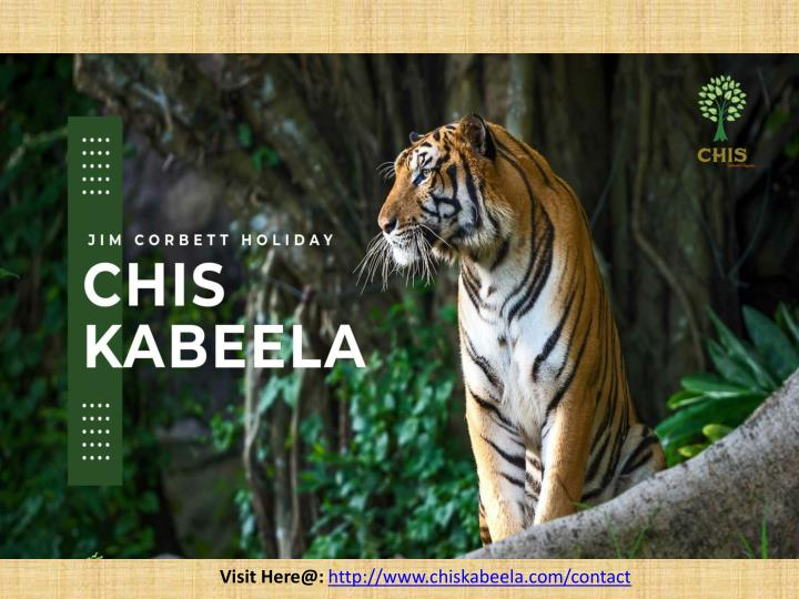 visit here@ http www chiskabeela com contact n.