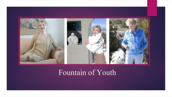 fountain of youth n.