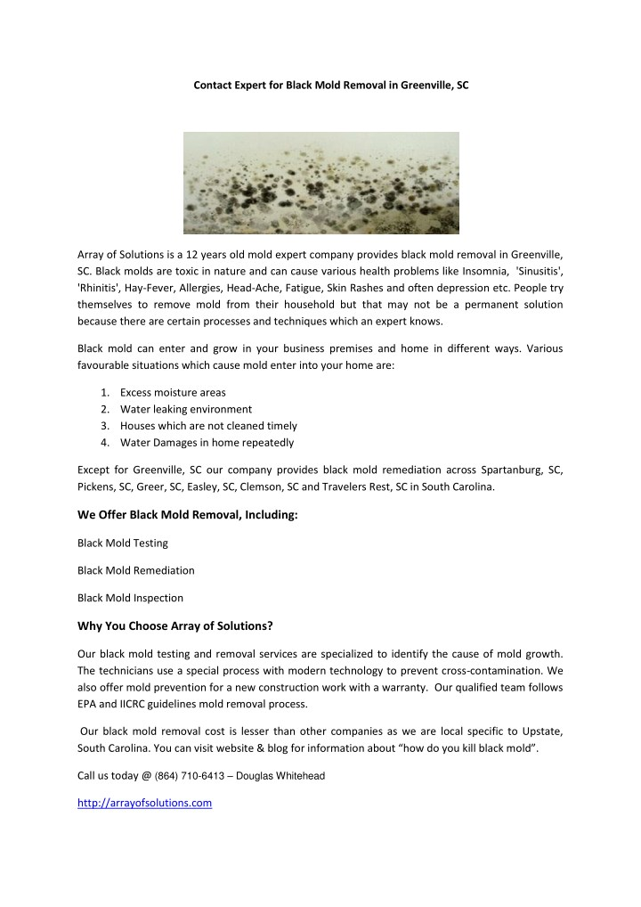 contact expert for black mold removal n.