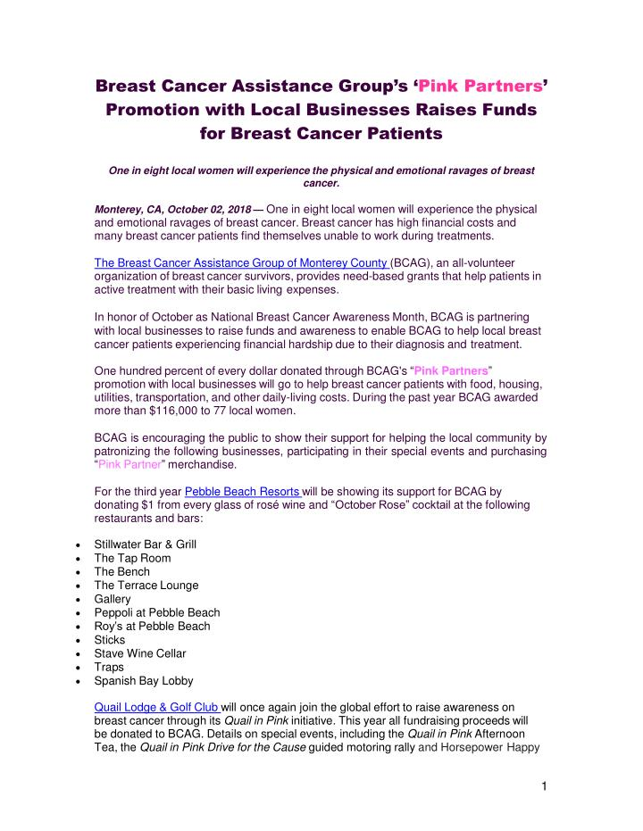 breast cancer assistance group s pink partners n.
