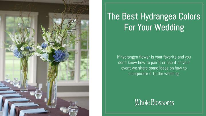 the best hydrangea colors for your wedding n.