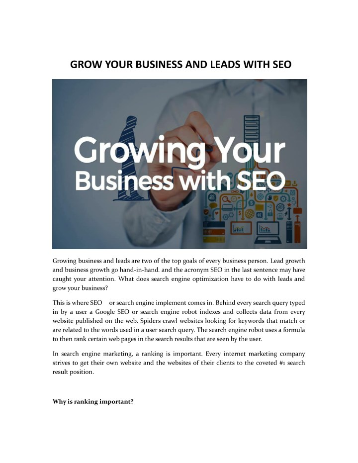 grow your business and leads with seo n.