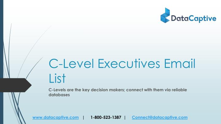 c level executives email list n.