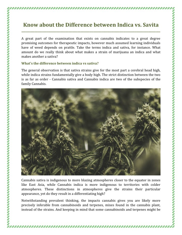 know about the difference between indica vs savita n.
