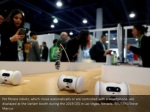 pet fitness robots which move automatically