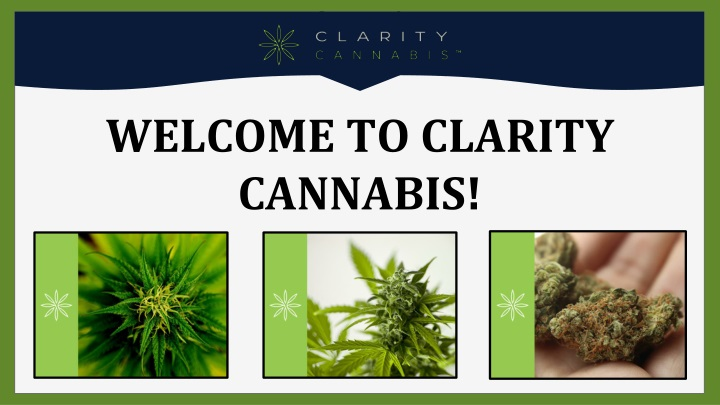 welcome to clarity cannabis n.