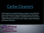 carbo cleaners