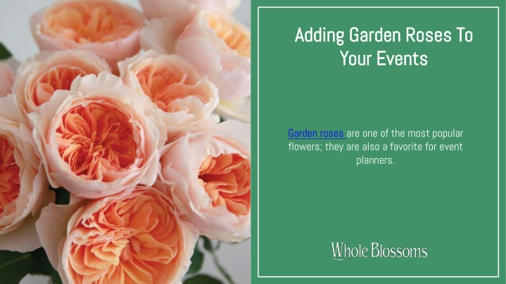 adding garden roses to your events n.