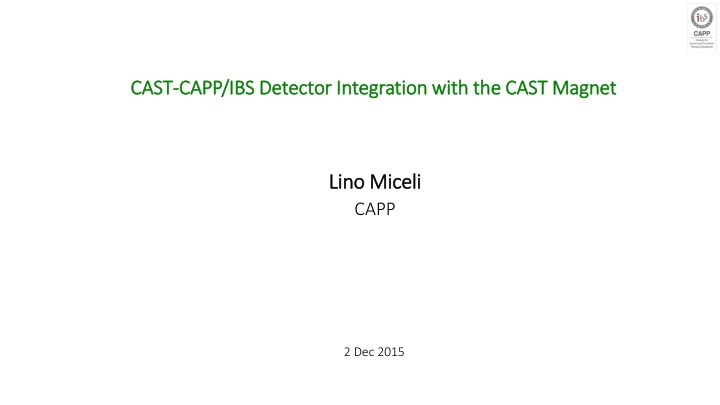 cast capp ibs detector integration with the cast magnet n.