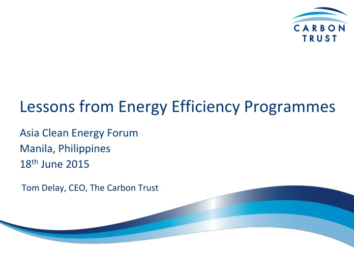 lessons from energy efficiency programmes n.