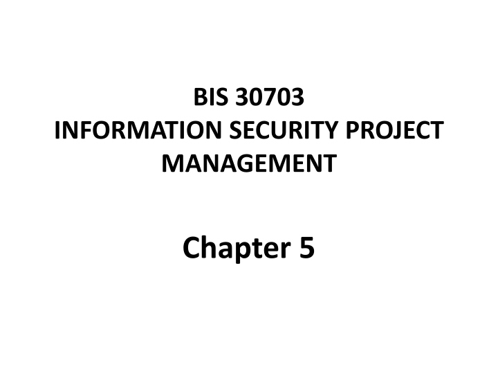 bis 30703 information security project management n.
