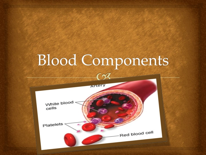 blood components n.