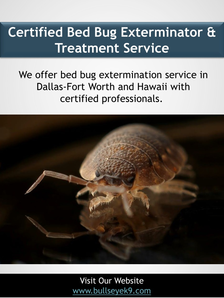 certified bed bug exterminator treatment service n.