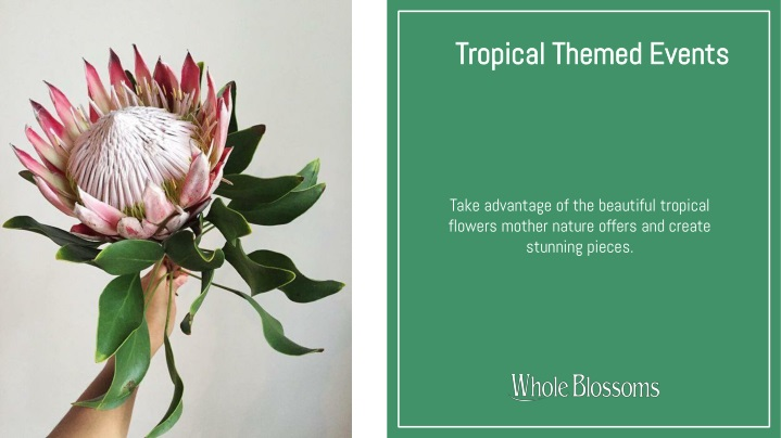 tropical themed events n.