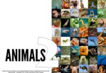 science all about animals 2