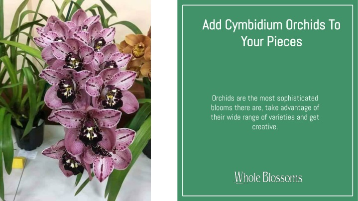 add cymbidium orchids to your pieces n.
