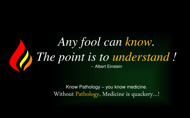 any fool can know the point is to understand n.