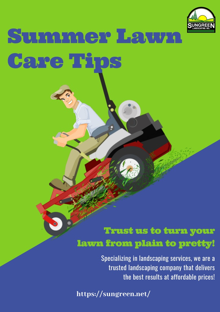summer lawn care tips n.