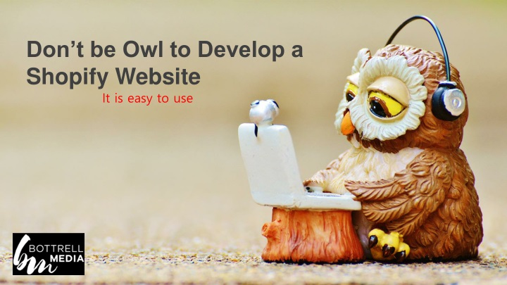 don t be owl to develop a shopify website n.