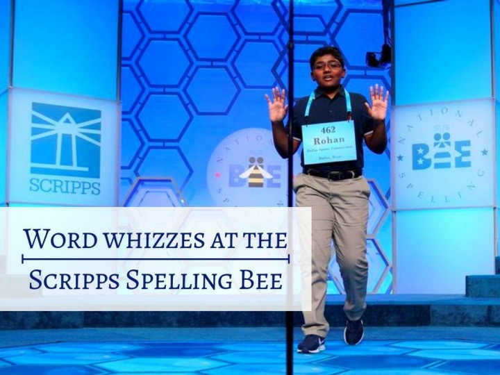 word whizzes at the scripps spelling bee n.