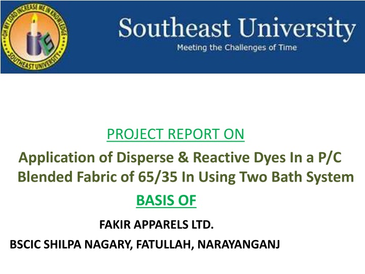 project report on n.