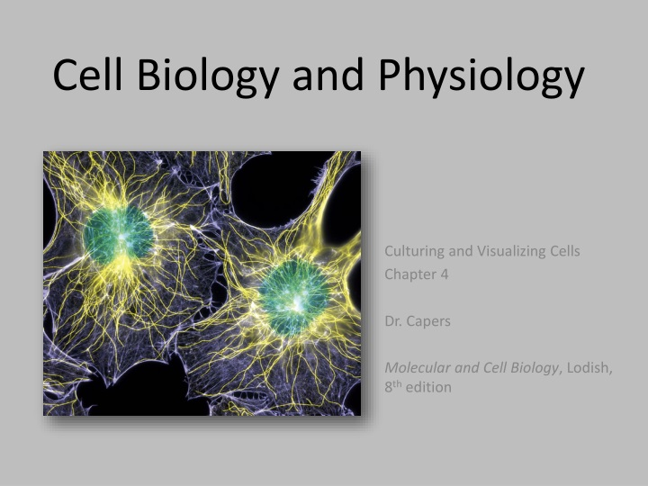 cell biology and physiology n.