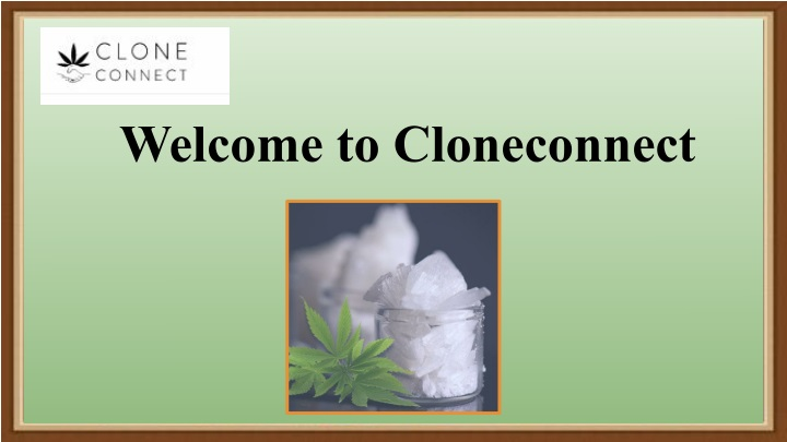 welcome to cloneconnect n.