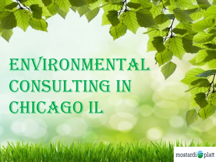 environmental consulting in chicago il chicago il n.