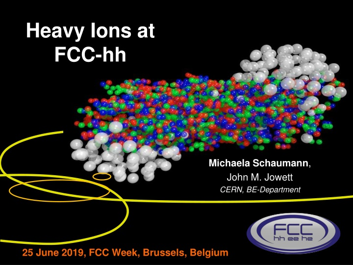 heavy ions at fcc hh n.