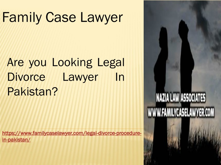 family case lawyer n.