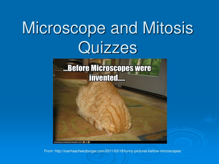 microscope and mitosis quizzes n.
