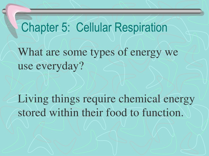 chapter 5 cellular respiration n.