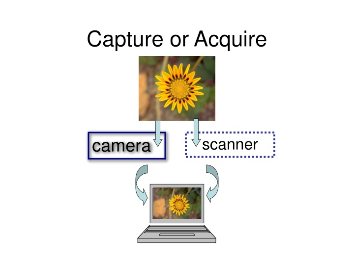 capture or acquire n.