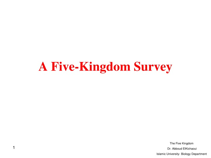 a five kingdom survey n.