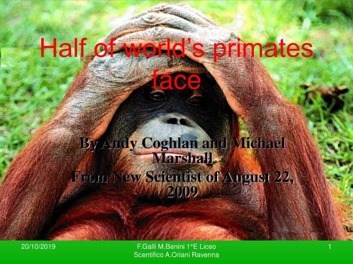 half of world s primates face n.