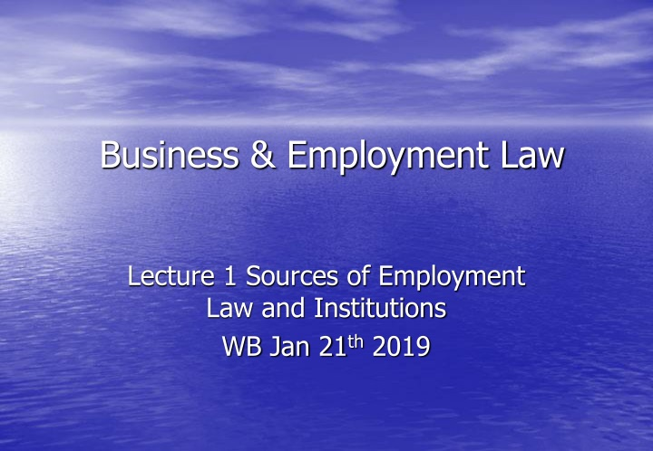 business employment law n.