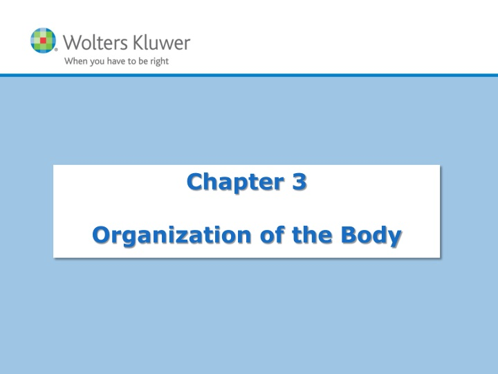 chapter 3 organization of the body n.