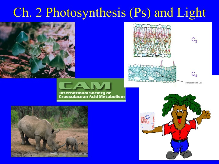 ch 2 photosynthesis ps and light n.