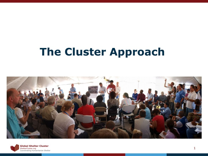 the cluster approach n.