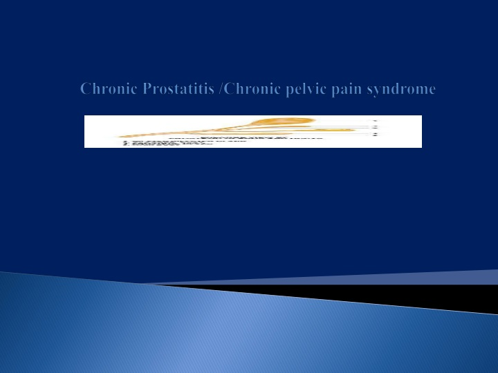 chronic prostatitis chronic pelvic pain syndrome n.