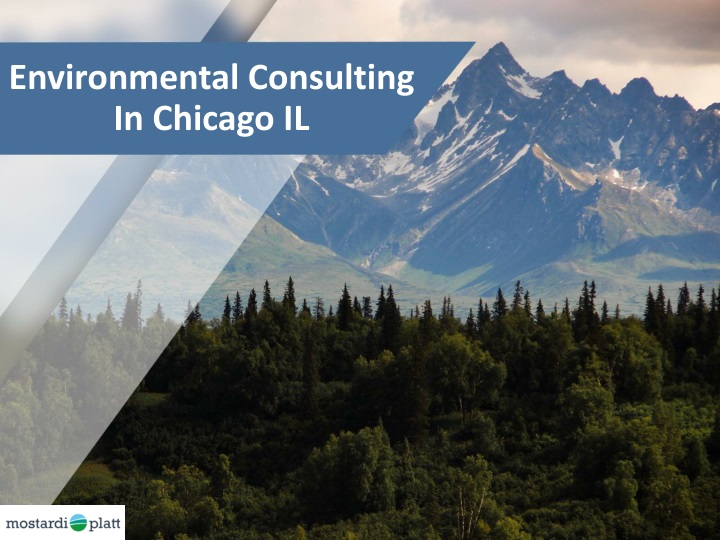 environmental consulting in chicago il n.
